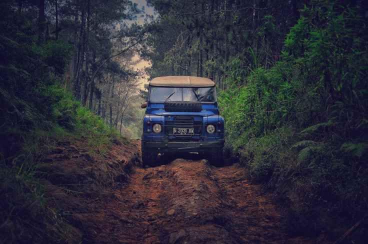 blue car on dirt road between green leaf trees